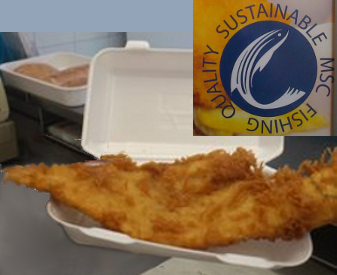 freshly prepared and cooked fish (Haddock)